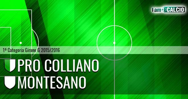 Pro Colliano - Montesano