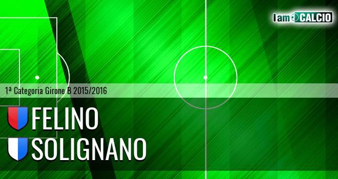 Felino - Solignano