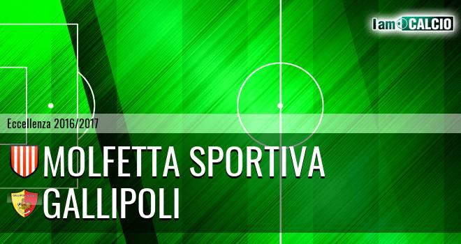 Molfetta Sportiva - Gallipoli