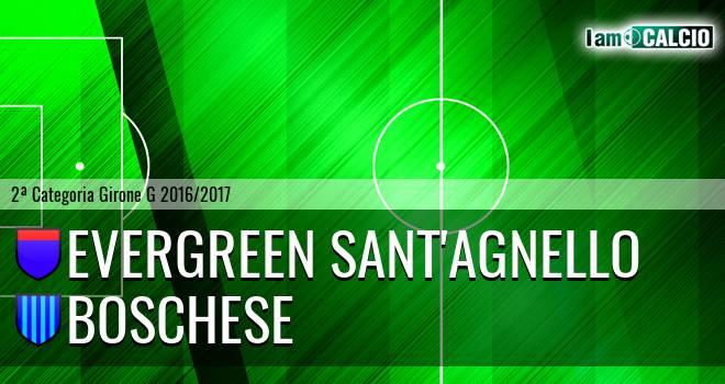 Evergreen Sant'Agnello - Boschese