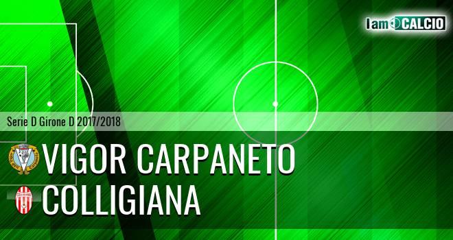 Vigor Carpaneto - Colligiana