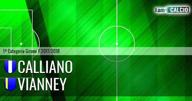 Calliano - Vianney