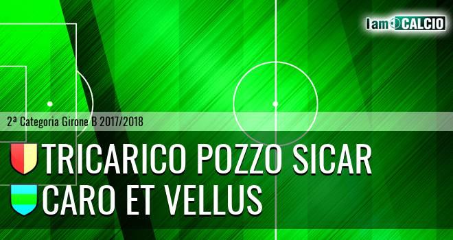 Tricarico Pozzo Sicar - Caro et Vellus