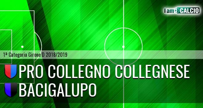 Pro Collegno Collegnese - Bacigalupo