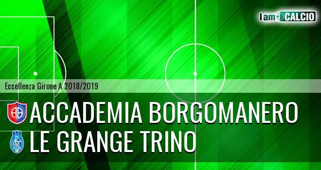 Accademia Borgomanero - Le Grange Trino