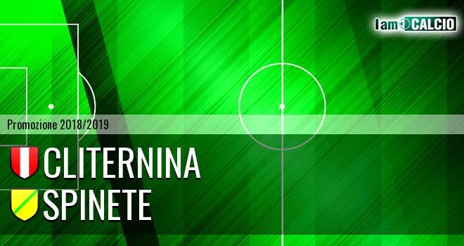 Cliternina - Spinete