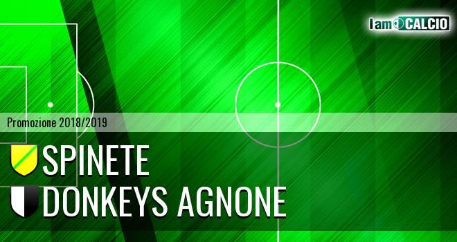 Spinete - Donkeys Agnone