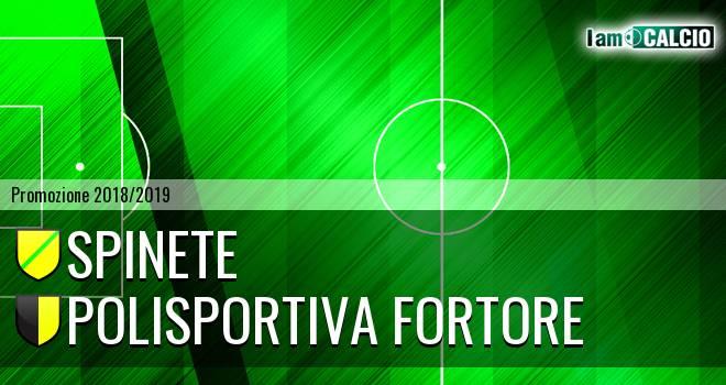Spinete - Polisportiva Fortore