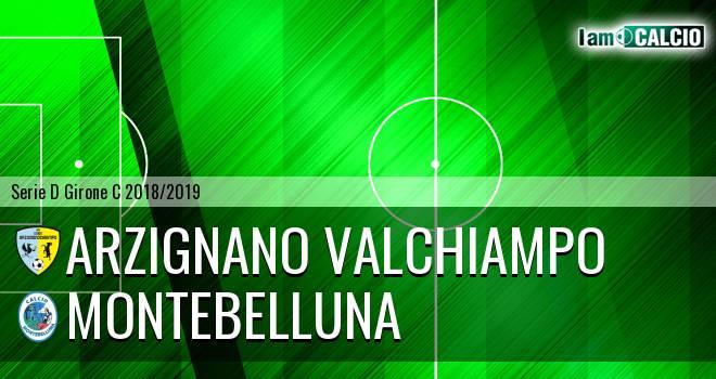 Arzignano Valchiampo - Montebelluna