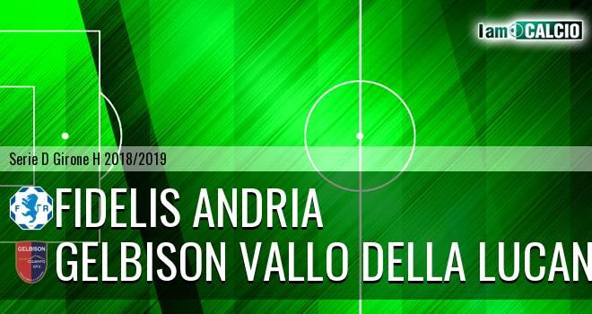 Fidelis Andria - Gelbison Vallo Della Lucania 0-0. Cronaca Diretta 06/01/2019