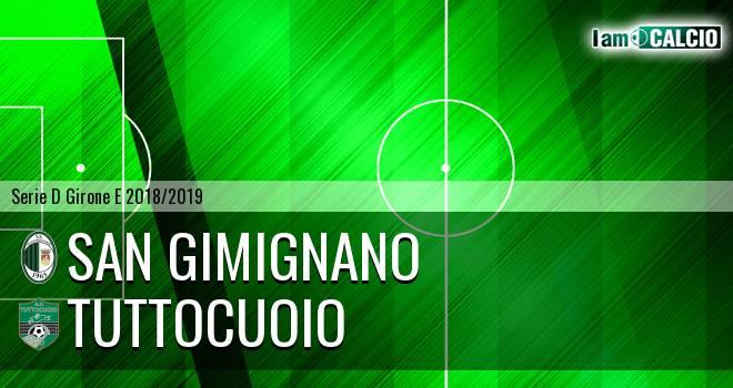 San Gimignano - Tuttocuoio