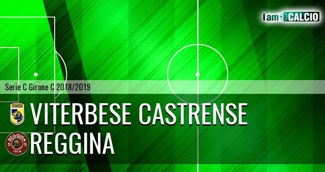 Viterbese Castrense - Reggina 1-1. Cronaca Diretta 16/01/2019