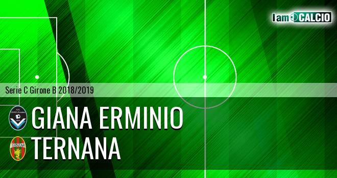 Giana Erminio - Ternana