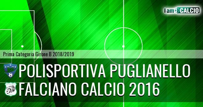 Polisportiva Puglianello - Falciano Calcio 2016
