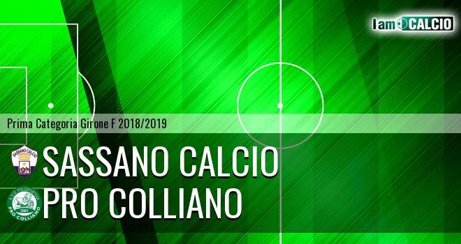 Sassano Calcio - Pro Colliano
