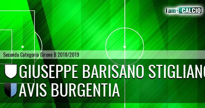 Giuseppe Barisano Stigliano - Avis Burgentia