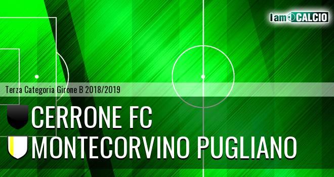 Cerrone Fc - Montecorvino Pugliano