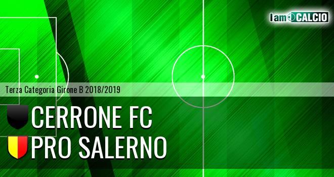 Cerrone Fc - Pro Salerno