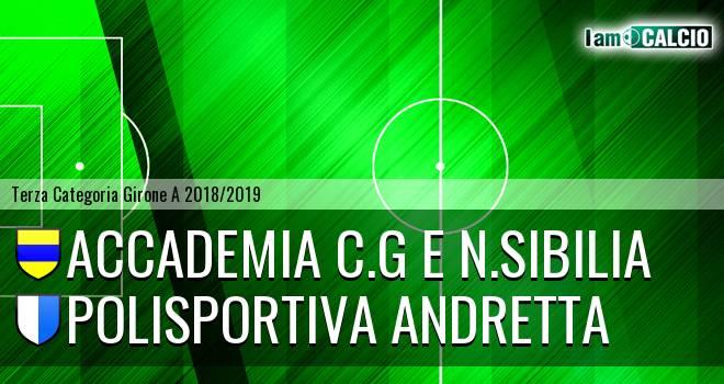 Accademia C.G e N.Sibilia - Polisportiva Andretta