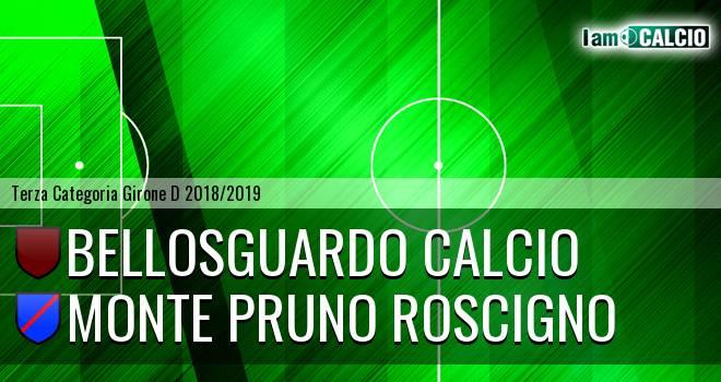 Bellosguardo Calcio - Monte Pruno Roscigno