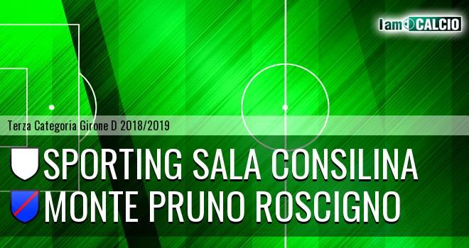 Sporting Sala Consilina - Monte Pruno Roscigno