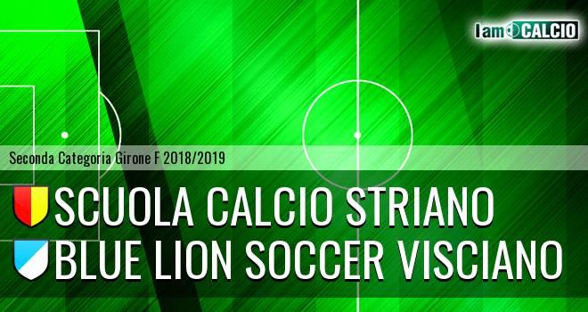 Scuola Calcio Striano - Blue Lion Soccer Visciano