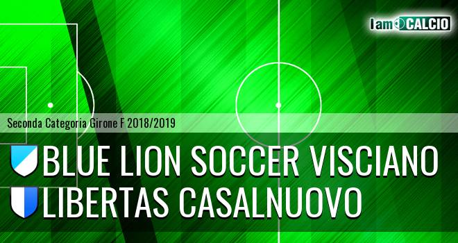 Blue Lion Soccer Visciano - Libertas Casalnuovo