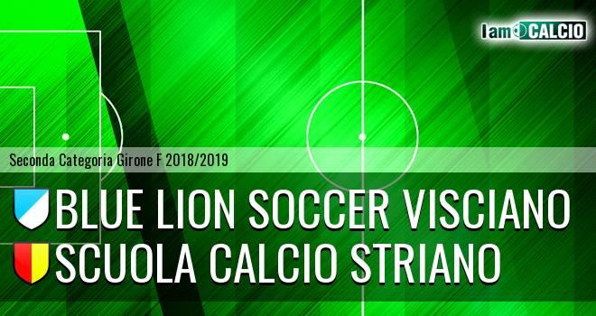 Blue Lion Soccer Visciano - Scuola Calcio Striano