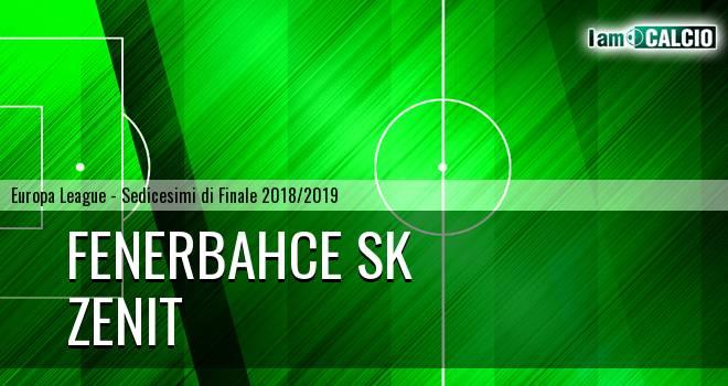 Fenerbahce SK - Zenit