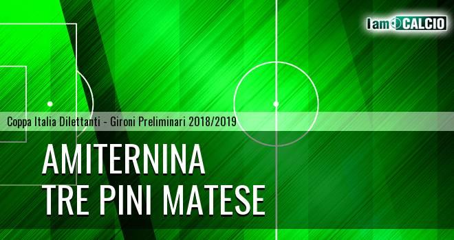 Amiternina - Tre Pini Matese 1-1. Cronaca Diretta 27/02/2019