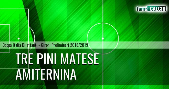 Tre Pini Matese - Amiternina 1-0. Cronaca Diretta 06/03/2019