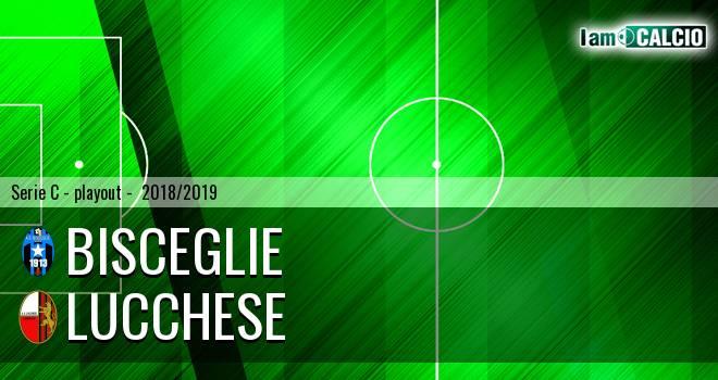 Bisceglie - Lucchese