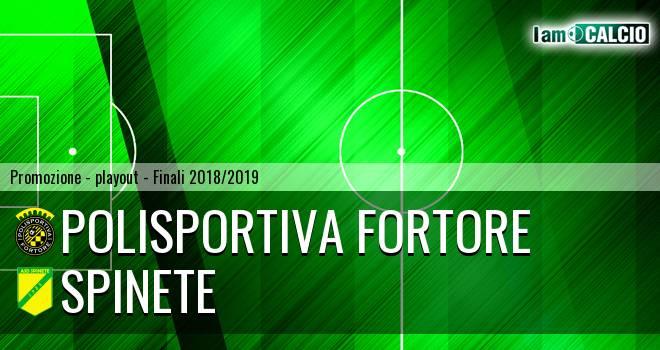 Polisportiva Fortore - Spinete