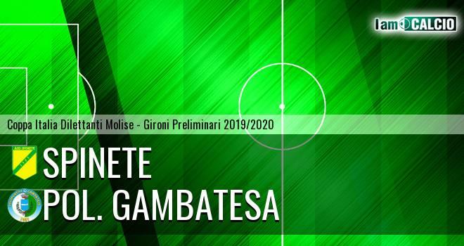 Spinete - Polisportiva Gambatesa