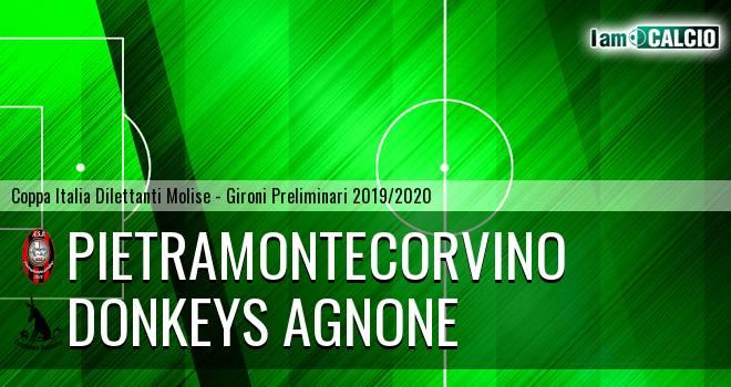 Pietramontecorvino - Donkeys Agnone