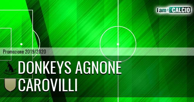 Donkeys Agnone - Carovilli
