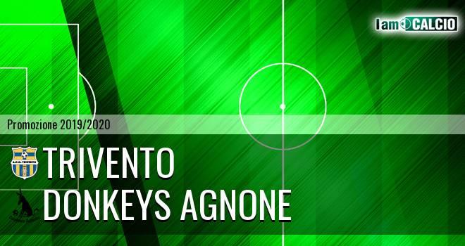Trivento - Donkeys Agnone