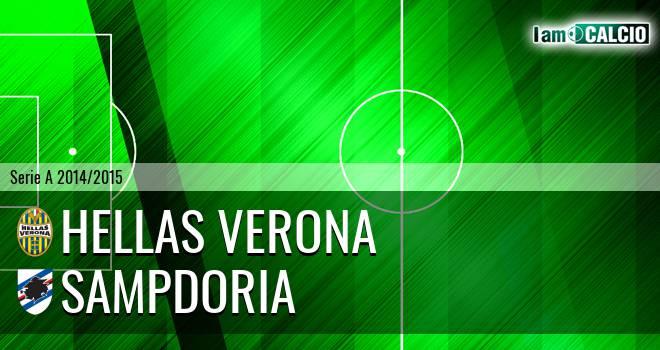 Hellas Verona - Sampdoria 1-3. Cronaca Diretta 08/12/2014