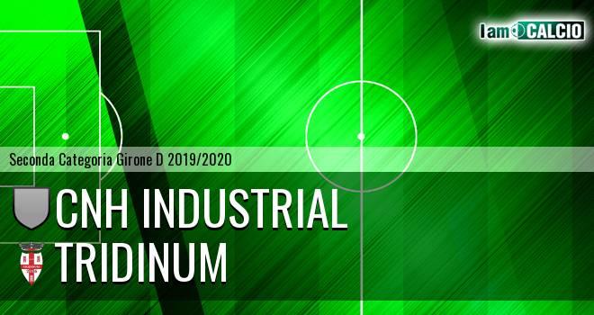 Cnh Industrial - Tridinum