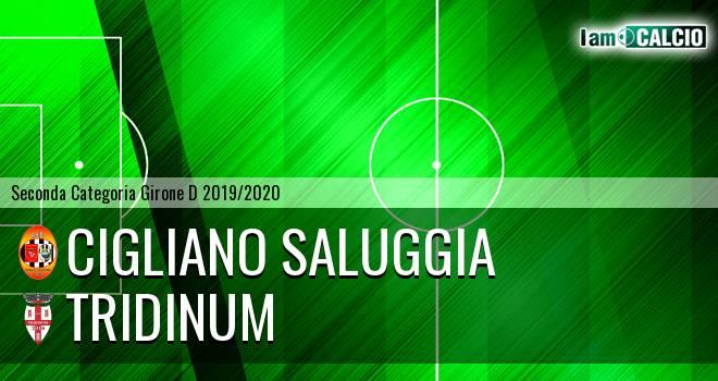 Cigliano Saluggia - Tridinum