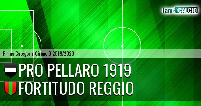 Pro Pellaro 1919 - Fortitudo Reggio