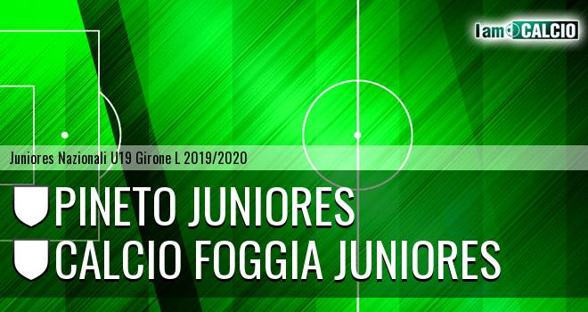 Pineto Juniores - Foggia Juniores