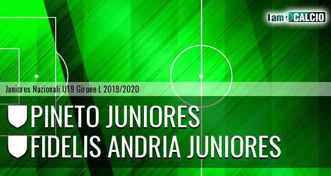 Pineto Juniores - Fidelis Andria Juniores
