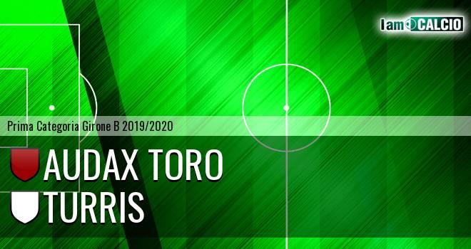 Audax Toro - Turris