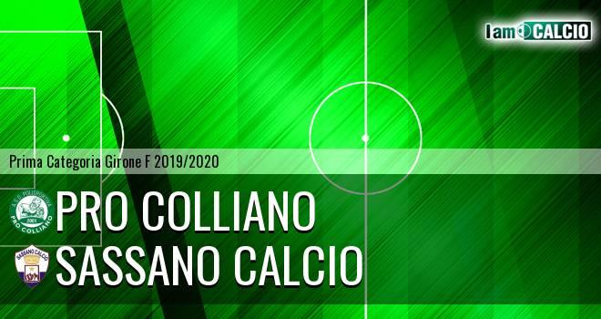 Pro Colliano - Sassano Calcio