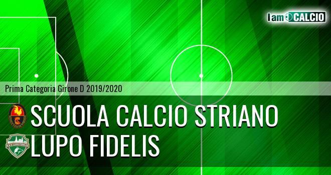 Scuola Calcio Striano - Lupo Fidelis