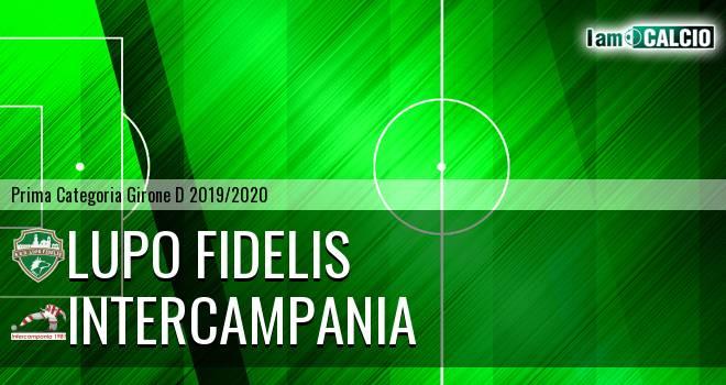 Lupo Fidelis - Intercampania