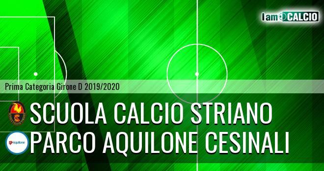 Scuola Calcio Striano - Parco Aquilone Cesinali