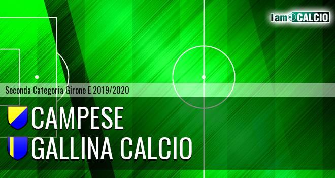 Campese - Gallina Calcio