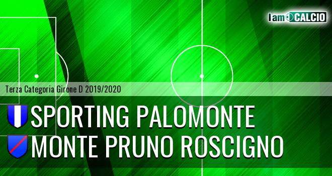 Sporting Palomonte - Monte Pruno Roscigno